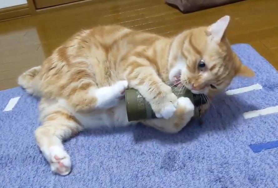 「あ、しまった……」手りゅう弾(ダミー)のピンを抜いちゃった猫のリアクションに爆笑