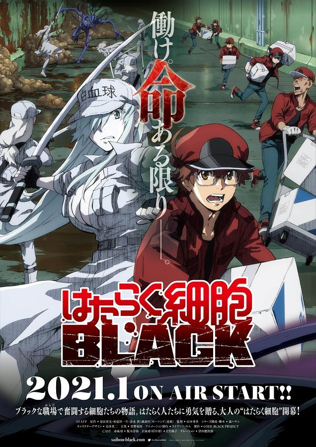 TVアニメ 「はたらく細胞BLACK」第1弾PV解禁 キャストコメントも到着!