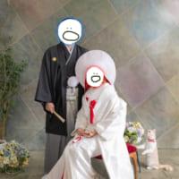 人生の門出だニャン 結婚写真に写りこんだ猫ちゃん