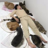 愛猫と寝るためにセミダブルベッドを購入 そこに待っていたのは…