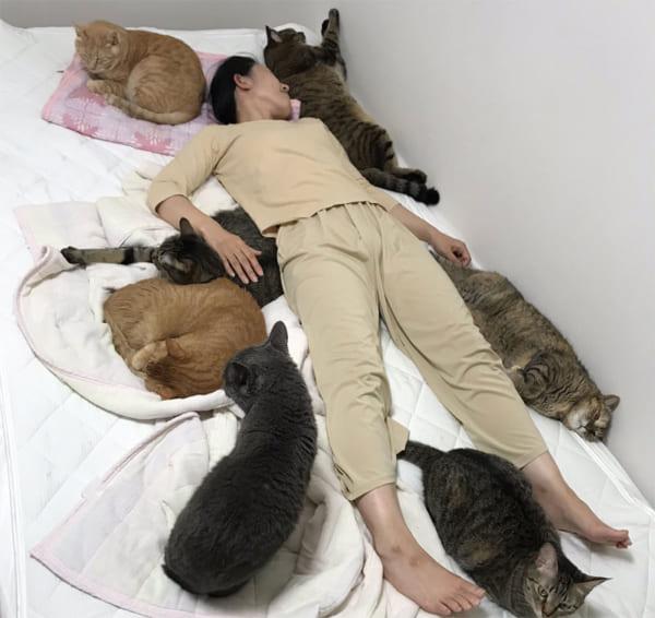 愛猫と寝るためにセミダブルベッドを購入 そこに待っていたのは……?