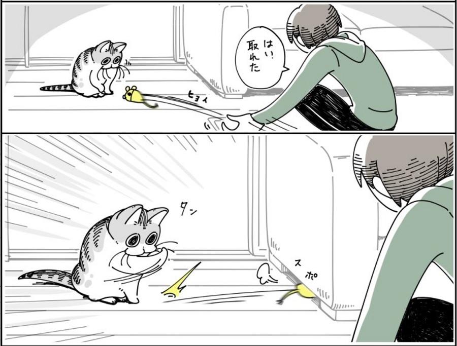 猫あるあるな遊びのスタイル? 「ソファーの下におもちゃを即in!」