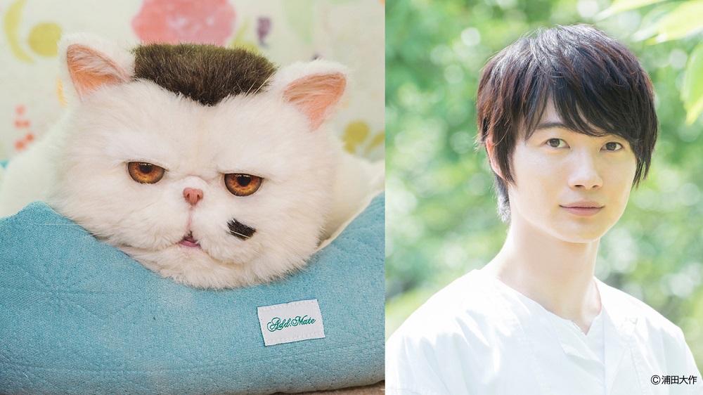 ドラマ「おじさまと猫」 ブサ猫ふくまるの声を神木隆之介が担当