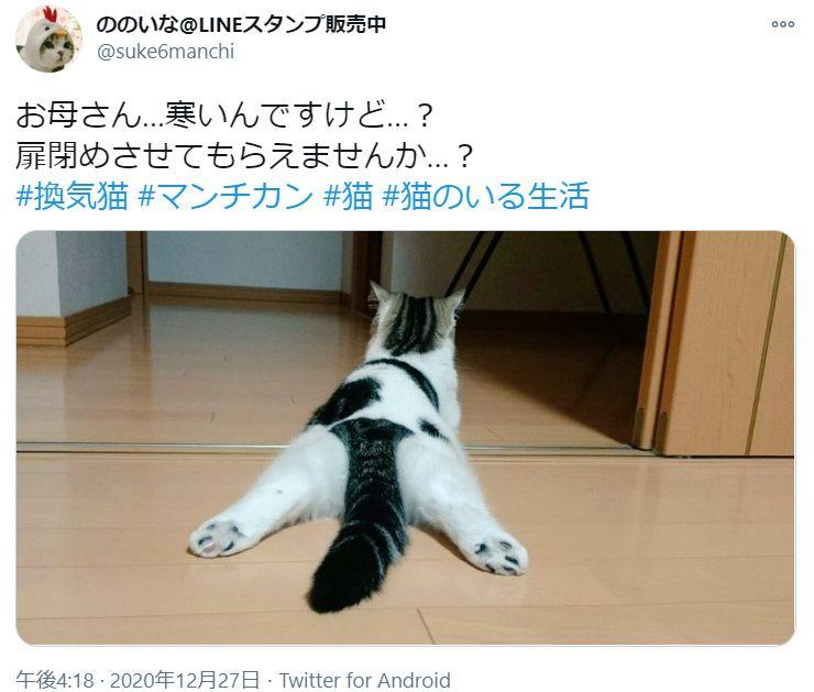 暑がり猫VS扉を閉めたい飼い主の攻防 「寒いんですけど…」