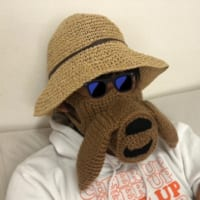 手編みの「ナウシカ」瘴気マスクがすごい これがあ…