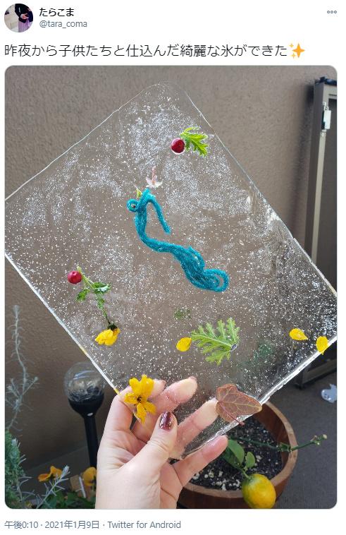 冬ならではの自然遊び「氷アート」 親から子へ受け継がれる寒い日を楽しむ工夫
