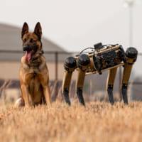 アメリカ空軍の「ロボット警備犬」現場での実証試験開始