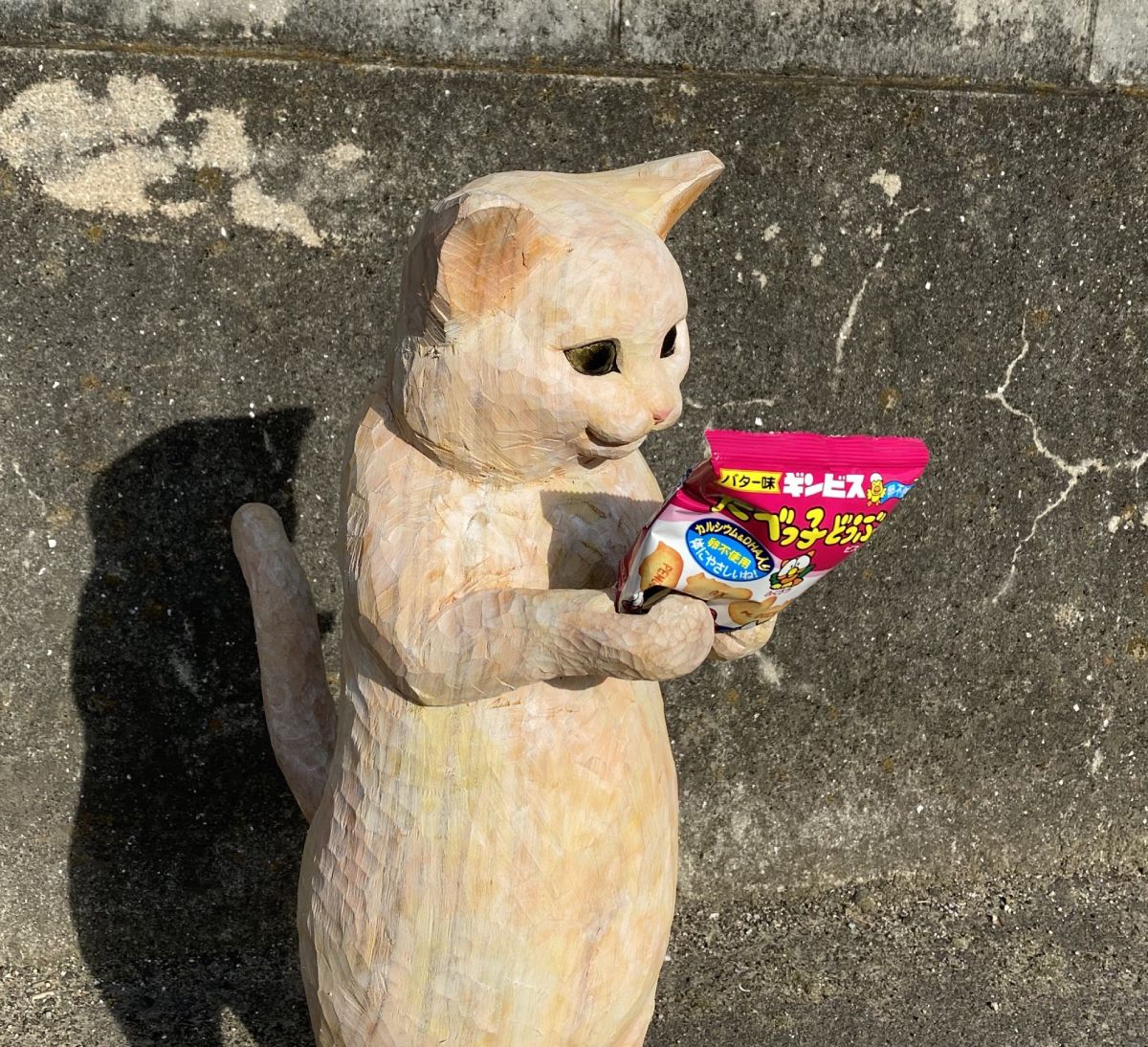 ギンビスが販売展開する「たべっこどうぶつ」を手に取る猫?ちゃん。