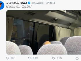 画像:フワちゃん公式Twitterのスクリーンショット