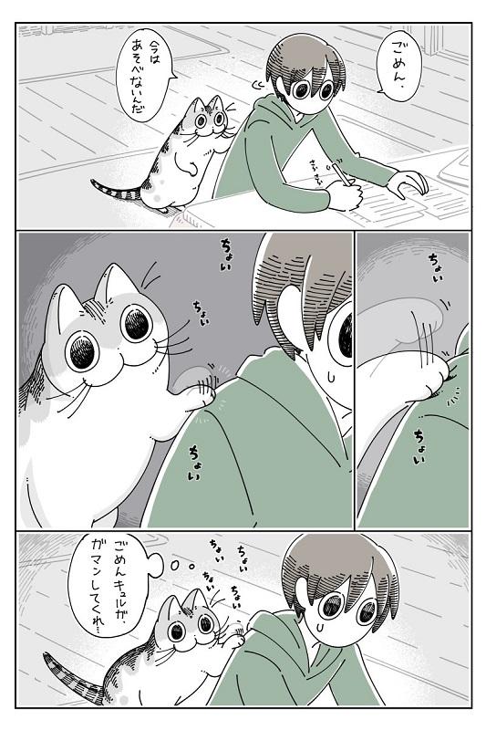 猫飼いあるある 飼い猫の構ってちゃんについ…… 2枚目