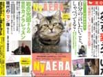 今回で第6弾!AERAが猫化した「NyAERA(ニャエラ)」発売