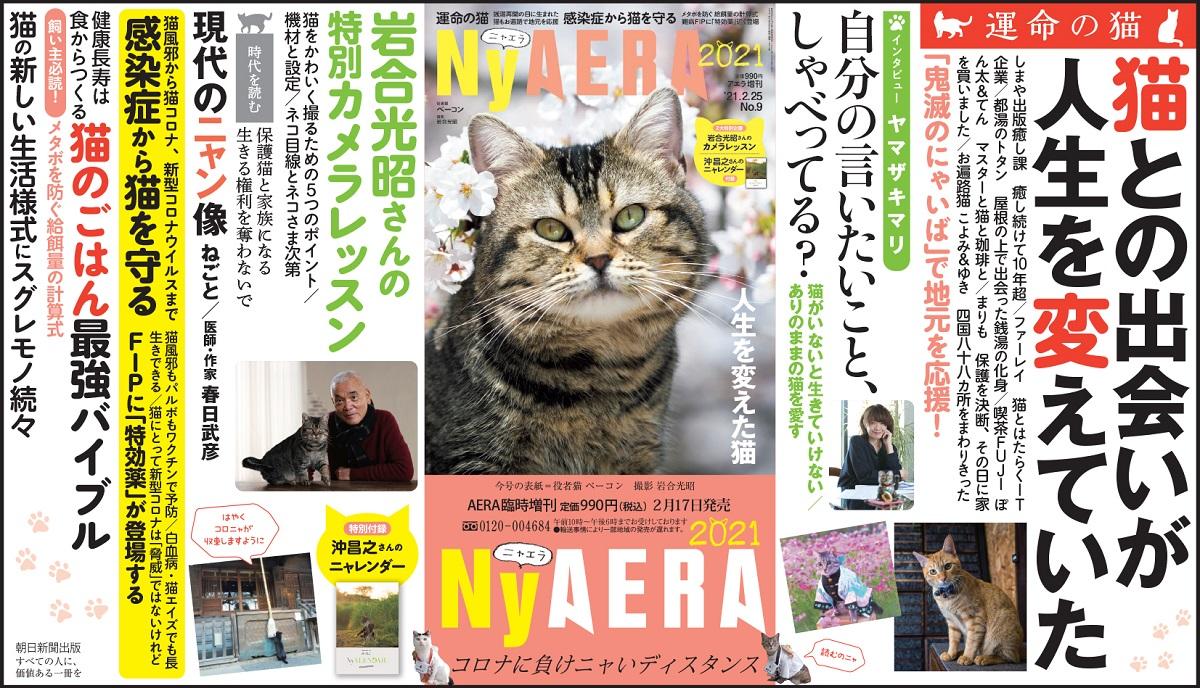 AERAが一冊まるごと猫化 臨時増刊「NyAERA(ニャエラ)」第6弾発売