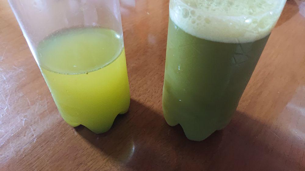 深蒸茶と同様の手法で作った紅ふうき。より深い緑となっています。