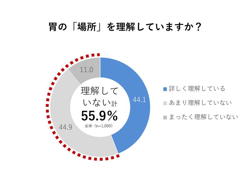 胃の場所を理解していない人は全体の55.9%
