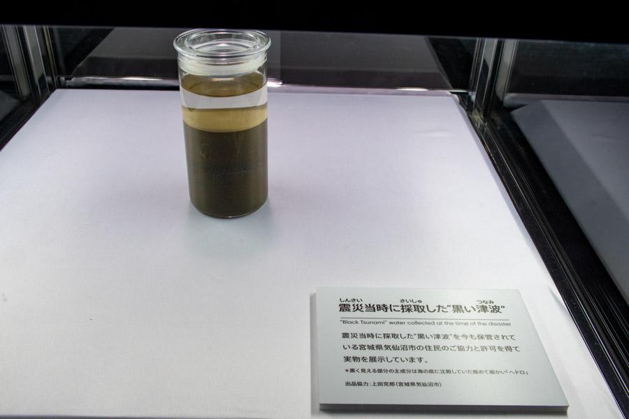 「黒い津波」標本