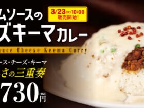 松屋のカレー専門店で「クリームソースのチーズキーマカレー」新発売