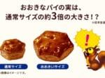 新作の「おおきなパイの実」は通常サイズの約3倍の大きさがあるそう