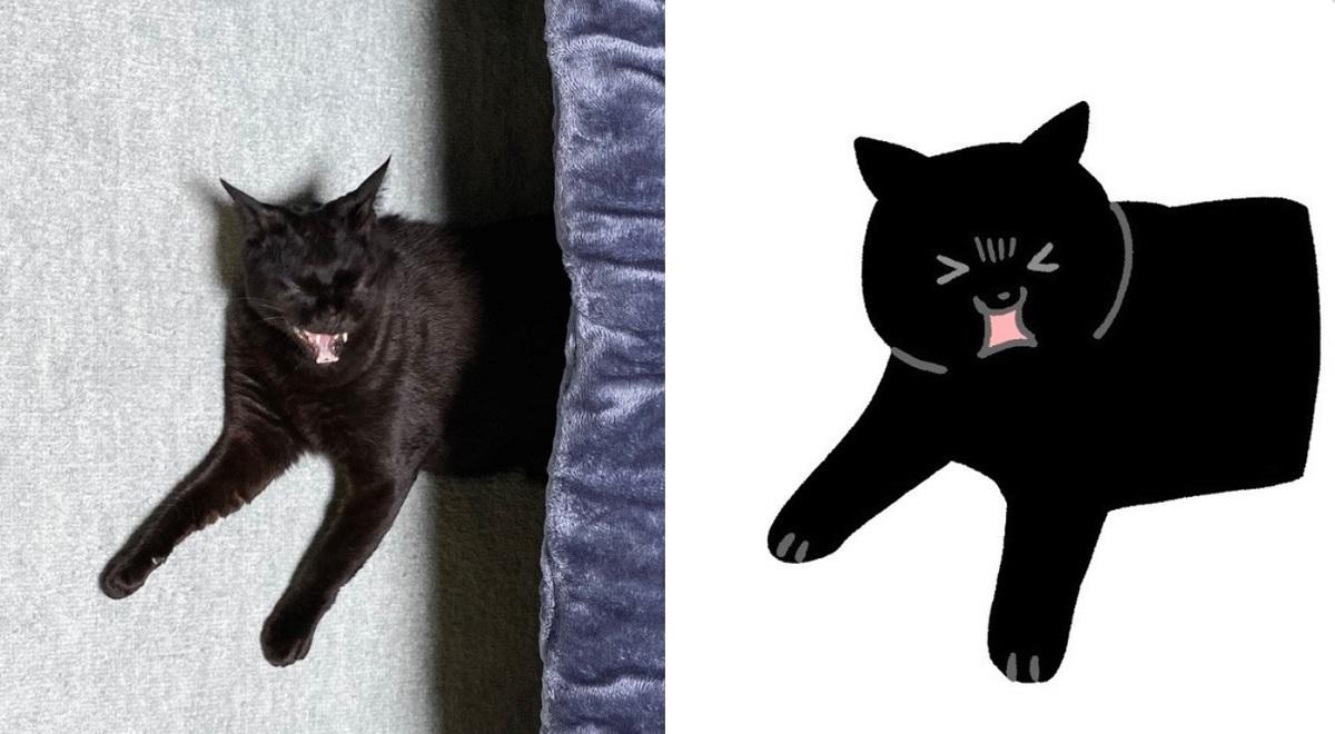 あくびした猫の表情が顔芸レベル 「そんなマンガみたいな目になる事ある?」