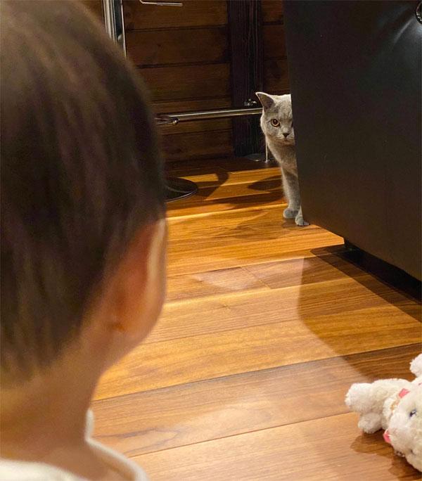猫と赤ちゃんが「未知との遭遇」 互いに固まる初対面に両親爆笑