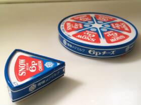 「6Pチーズ1P用」のケース(犬のかがやきさん提供)