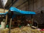 ホームレスの生活を体験できるMMORPG「Hobo: Tough Life」