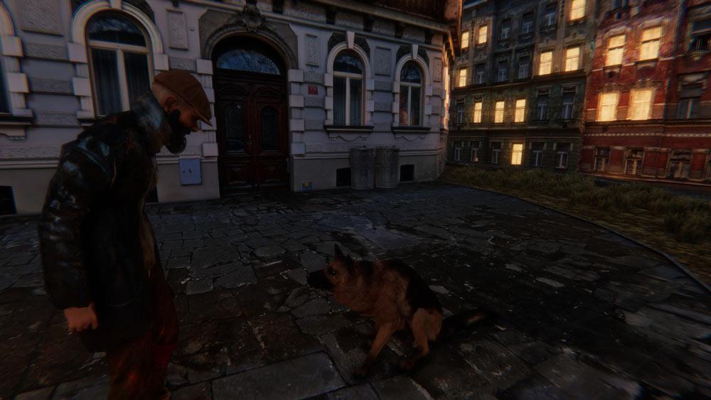 野良犬との対峙