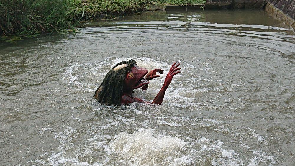 発祥の地となった「辻川山公園」には池から出没します。