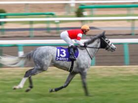 「ウマ娘 プリティーダービー」でも人気のゴールドシップ(2013年有馬記念勝利時)