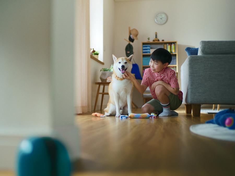 成長を見守ってきた子供と子犬