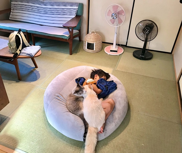 「ねこ布団」で眠る息子さん