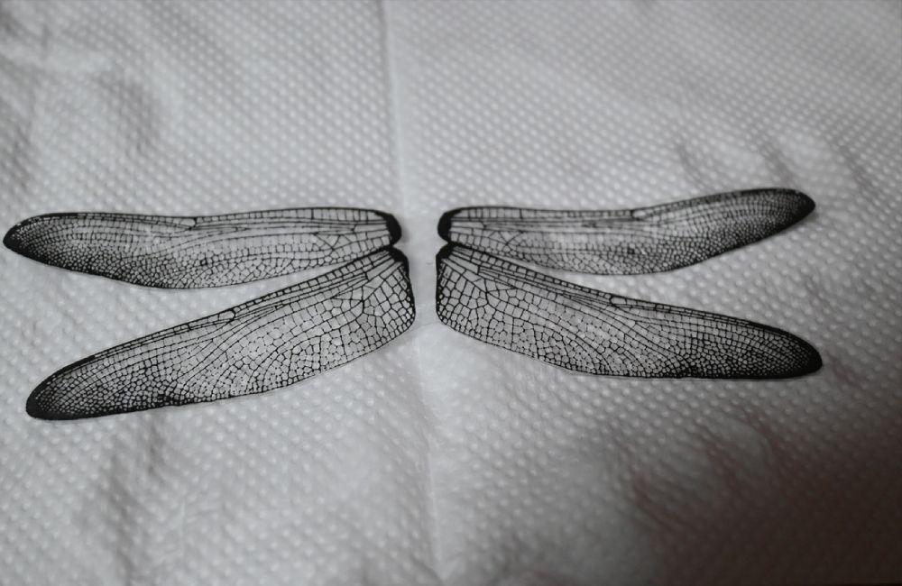 コンビニのコピー機で印刷した羽根に100均ショップで販売されている梱包用テープを貼り付け。
