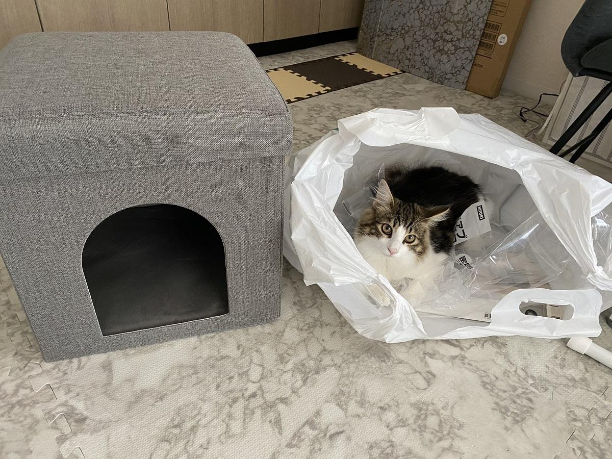 愛猫のためにペットハウスを買った結果 「違う、そうじゃないw」