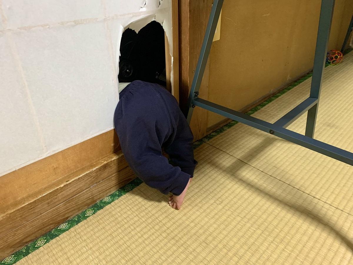 障子に身体ごと突っ込む松本さんの次男くん