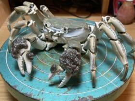 生きているかのように自在に動く蟹の陶器を作った陶芸家がTwitterで話題。