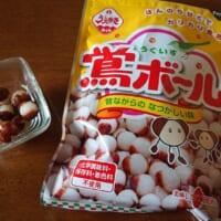 関西では知名度抜群の大正義お菓子 植垣米菓「鴬ボール」知って…