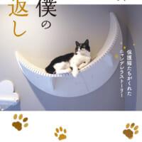 """猫マスター響介の""""猫ファースト""""な家づくり本「下僕の恩返し」…"""
