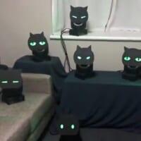 まるで生きているみたい こっちを見てくる黒猫ライ…