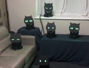 まるで生きているみたい こっちを見てくる黒猫ライトがコワかわいい