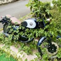 バイクを1か月半放置していたら大変なことに……草…