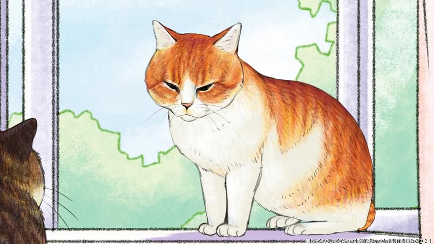 地回り猫・オサム