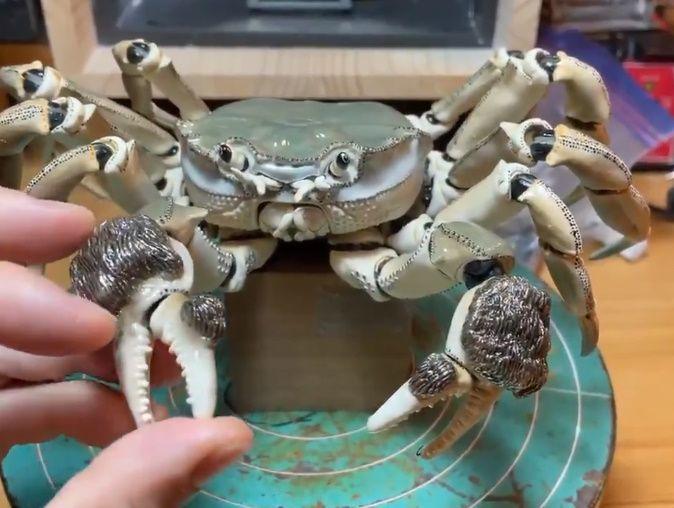 岡村さんは蟹の可動性を動画でも投稿されています……スゴイ。