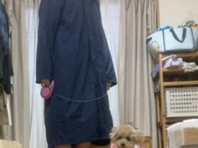 シェリちゃんのために雨の中、散歩を決意した飼い主さん。