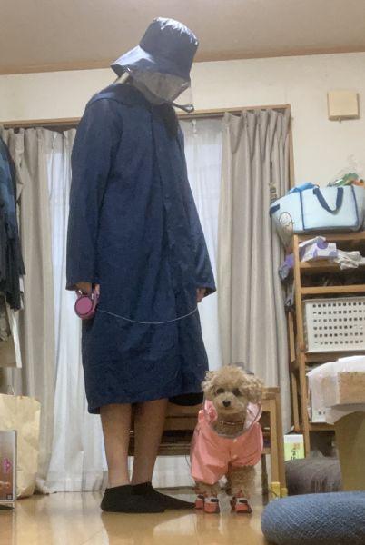 雨の日散歩でレインコートを着た結果→「犬をつれた不審者」状態に
