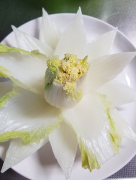 綺麗に花開く開水白菜の裏側