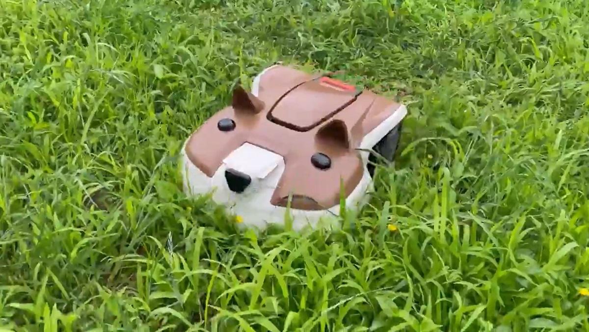 今日もたくさん芝を刈るワン 柴犬の芝刈りロボットが健気でかわいい