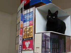 あの新宿の巨大猫を自宅で再現!ジオラマの完成度の高さに30万いいね