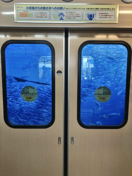 買い物の帰りに電車に乗った江ノ島さんぽちゃんの眼前に写っていた大海原。