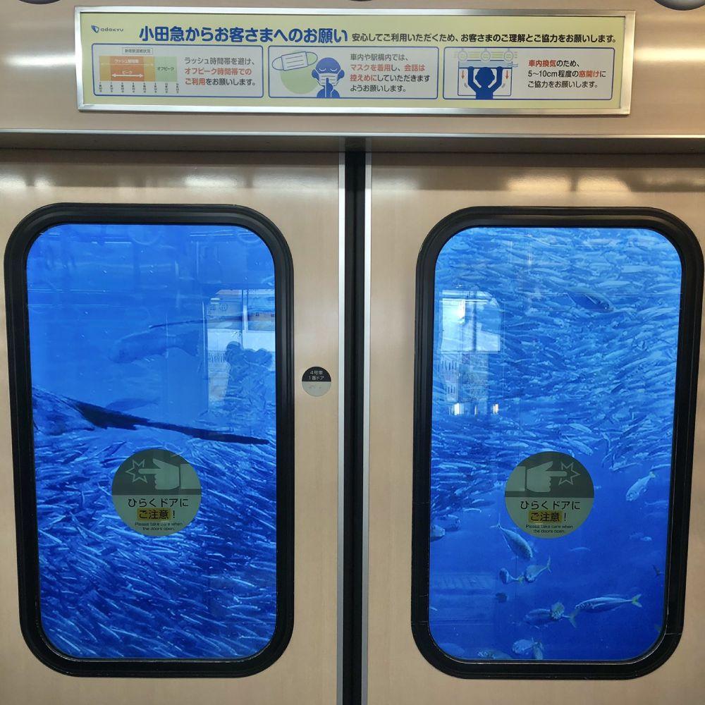 小田急線車両で見かけた藤沢の良い写真 江ノ島さんぽちゃんの発見に10万いいね