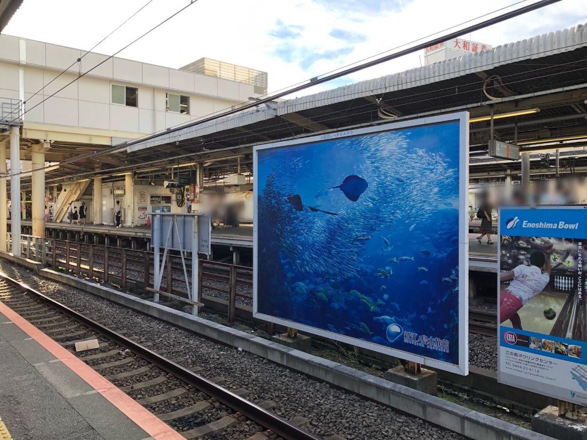 実は車両の向こうには新江ノ島水族館の広告看板が掲示。偶然の写りこみでした。