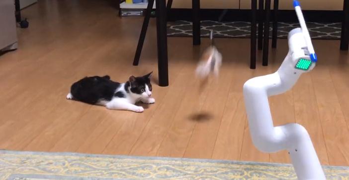 おちょくるかのごとく、ももちちゃんの眼前でうごめく自動猫じゃらしロボ。